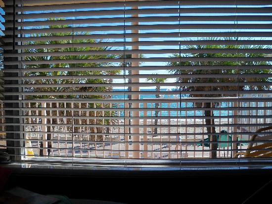 Tide Vacation Apartments: View from the breakfast table