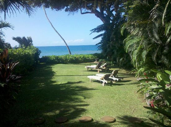 Maui Beachcomber: View from house