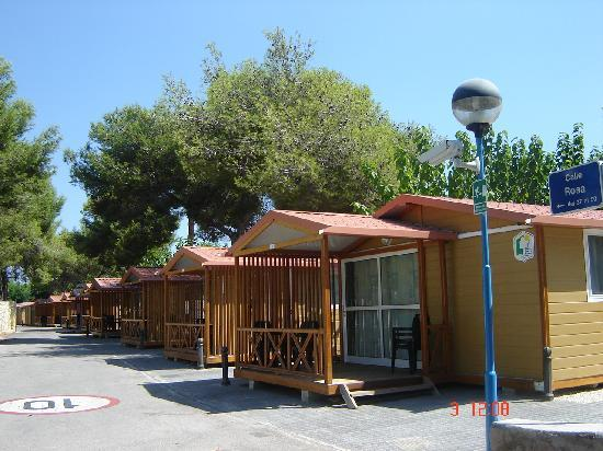 Bungalows picture of camping arena blanca benidorm for Camping arena blanca