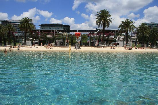 Swimming Pool Bank : South bank swimming pool picture of pullman brisbane