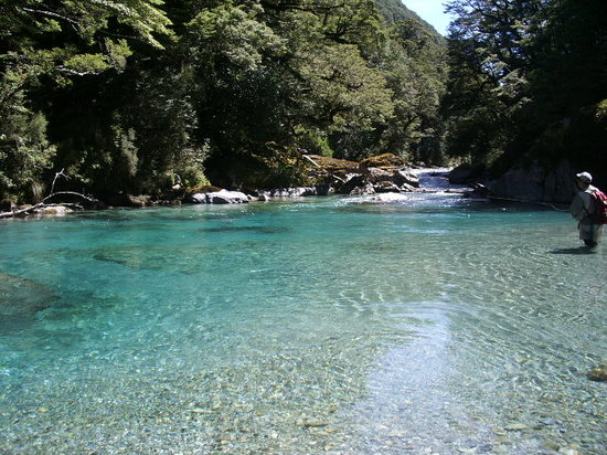 Things To Do Near Routeburn Track Hiking Tour  New Zealand Breeze In Queenst