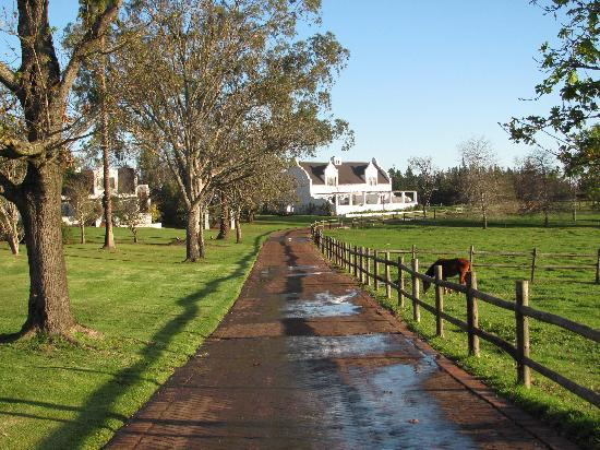 Kurland Hotel: tranquil