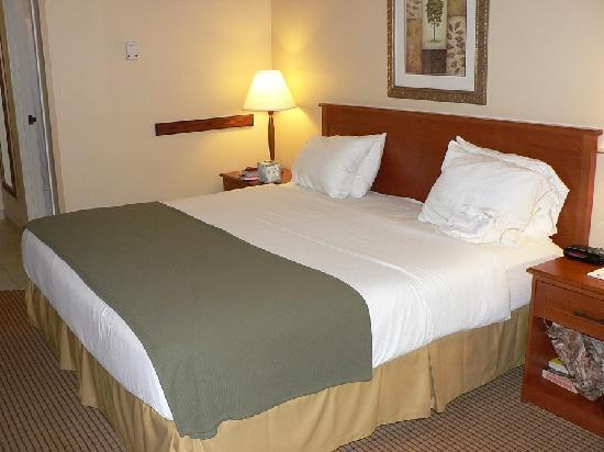 Holiday Inn Express Glenwood Springs: Comfortable king size bed