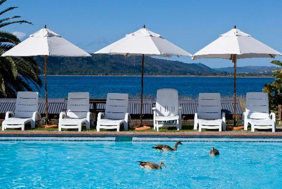 Sedgefield, South Africa: Relax by the swimming pools (5 on the resort)