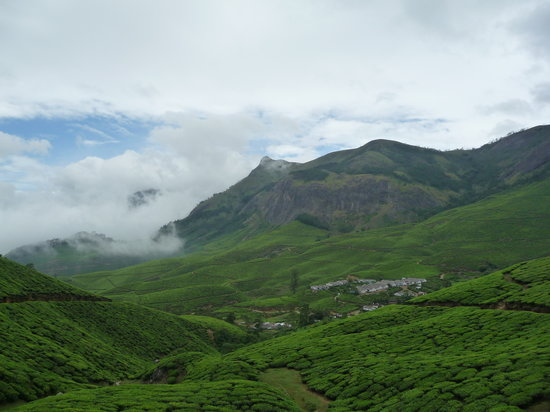 Kolukkumalai Tea Estate