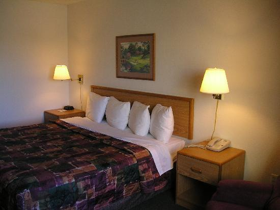 AmericInn Hotel & Suites Apple Valley: Single King Bed