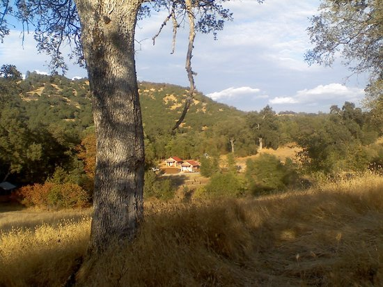 Photo of Sivananda Ashram Yoga Farm Grass Valley