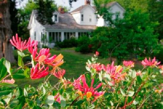 Chesapeake bed and breakfasts