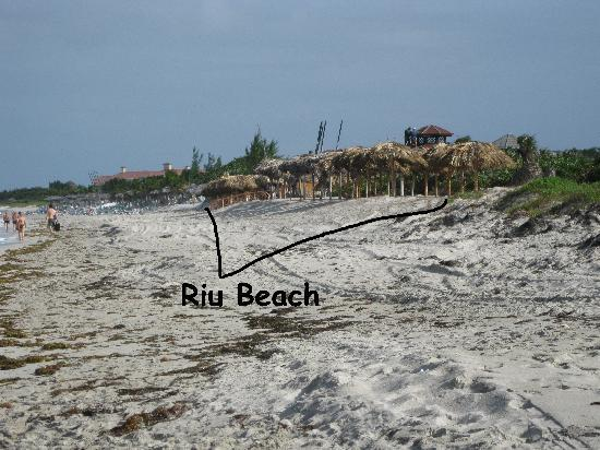 Hotel Riu Varadero : Beach Area too small for the size of Resort