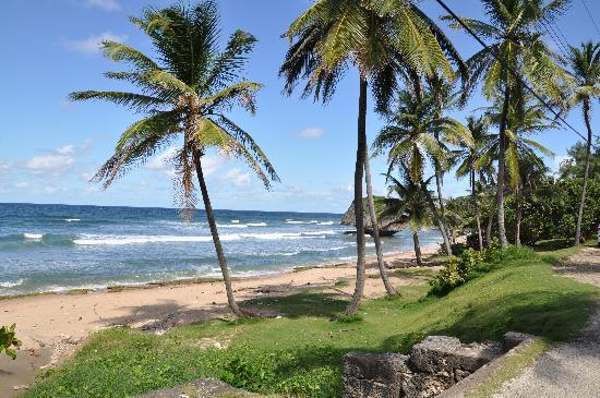 Photo of New Edgewater Hotel Bathsheba