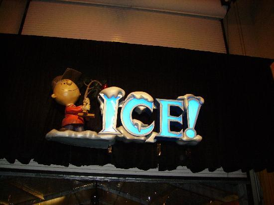 Gaylord Texan Resort & Convention Center: Ice