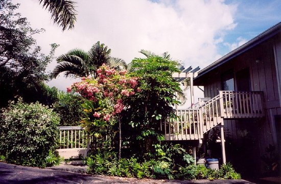 Photo of Seaview Suite Kalaheo
