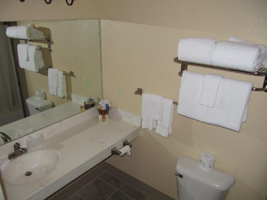 The Inn at Palmer Divide: Bathroom