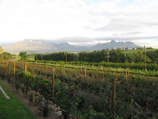 Photo of Aan-den-Weg Bed & Breakfast Stellenbosch