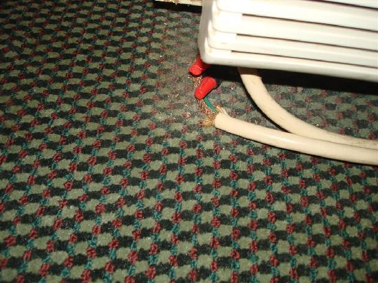 Howard Johnson Inn Roanoke/Airport: How could this pass any inspection?