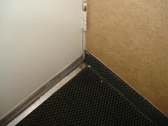 Howard Johnson Inn Roanoke/Airport: someone decided to leave some dirt in the room