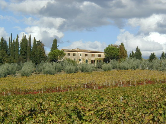 Fattoria Casa Sola