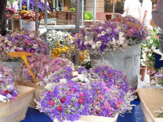 Beaune, France: Gorgeous dried flowers