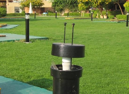 CLUB CALIMERA Habiba Beach: Lamp disease - case #n+2 - Minigolf field