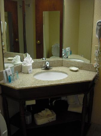 Hampton Inn and Suites Valley Forge/Oaks: Bathroom vanity
