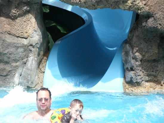 Water Slide Picture Of Marriott S Aruba Surf Club Palm