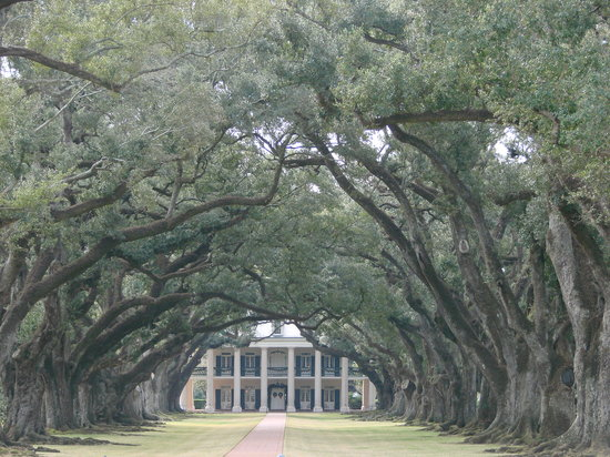 Nouvelle-Orléans, Louisianne :                   Oak Alley Plantation