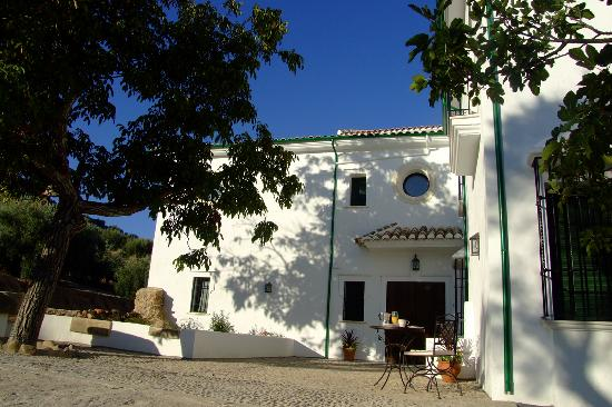 Casa Olea: Traditional Andalucian cortijo with indulgent touches