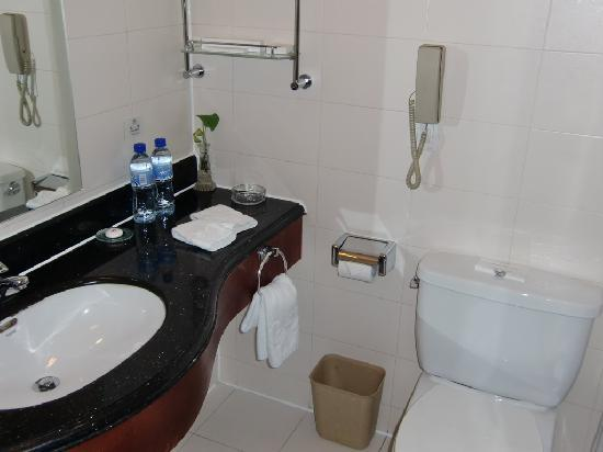 Tianyu Gloria Grand Hotel Xian: Sink & toilet