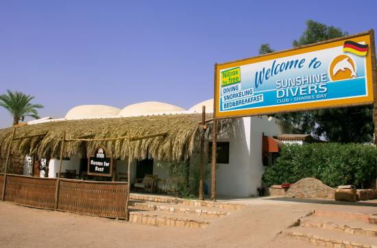 Sunshine Divers Club - Sharks Bay