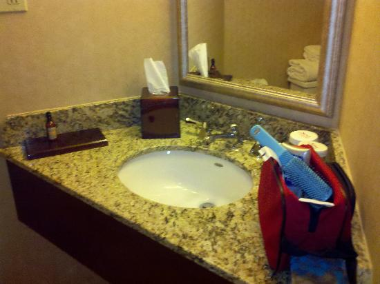 Des Moines Marriott Downtown: The bathroom vanity is really small.  Okay for guys.  I don't think so for gals.