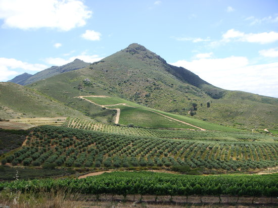 Franschhoek, Zuid-Afrika: From the valley