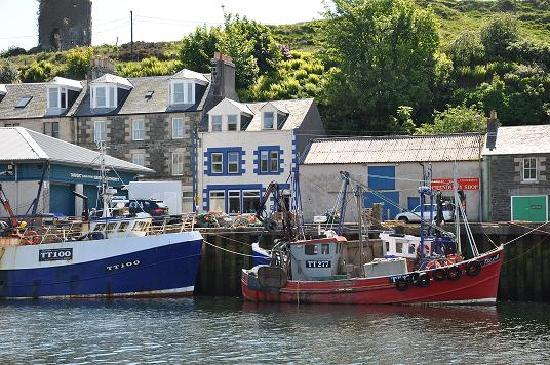 Tarbert, UK: Struan House