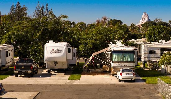 Anaheim Resort RV Park: Mickey's Backyard