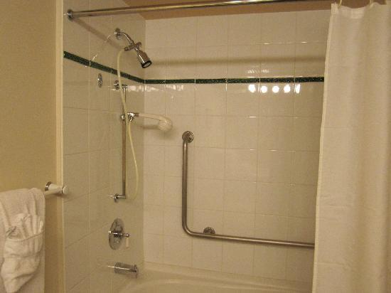 Whistler Town Plaza Suites: shower