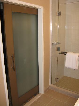 Neat Bathroom Frosted Glass Pocket Door Bathroom Pinterest