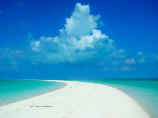 Great Exuma: Musha Cay Sand BAr
