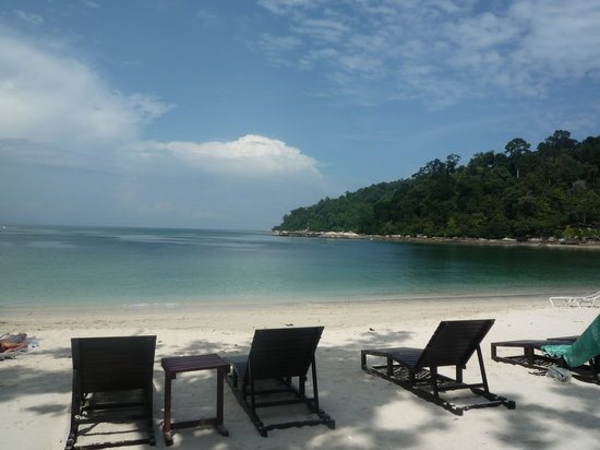 Nipah Guesthouse: Beautiful Coral Beach