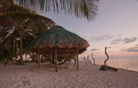Coral Garden Inn: Palapa at sunrise