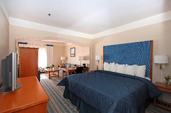 Comfort Inn & Suites Savannah Airport : Junior King Suite
