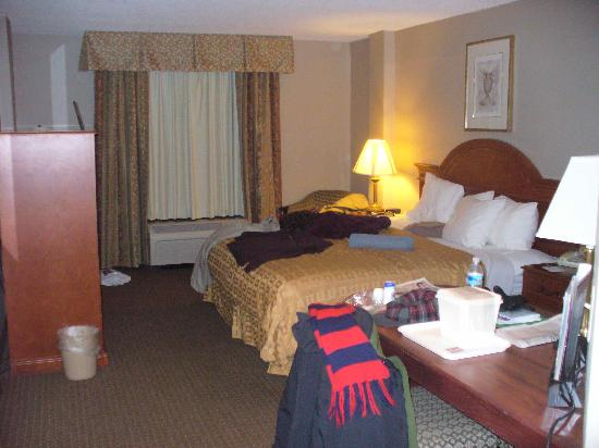 Clarion Hotel & Suites Conference Center: King room