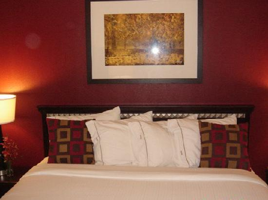 Holiday Inn Express Ridgeland - Jackson North Area: King Bed