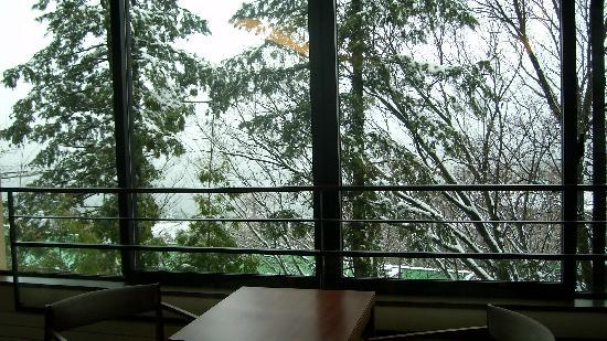 Hyatt Regency Hakone Resort and Spa: Indoor private balcony in room