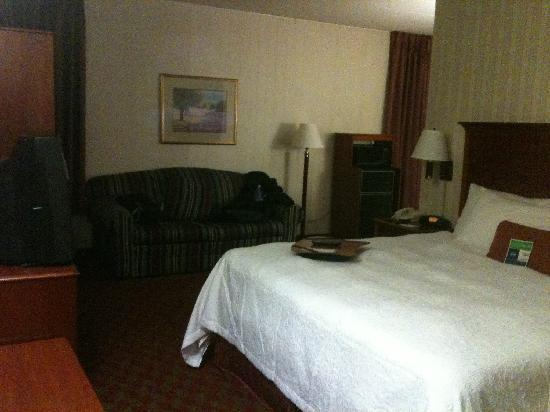 Hampton Inn Allentown: View when Entering