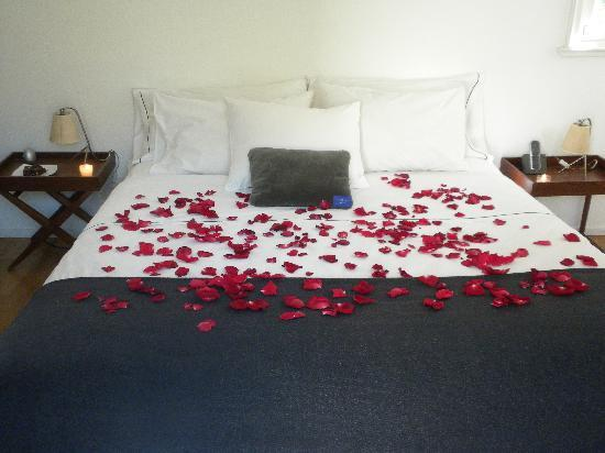 Tailor Made Hotel: Our room decorated with rose petals!