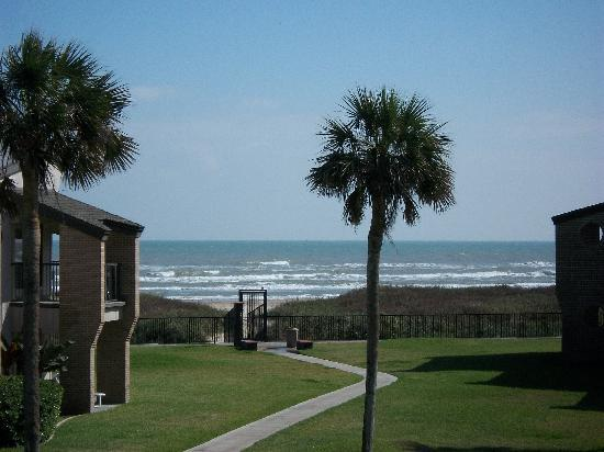 Sunchase Iv South Padre Island Reviews
