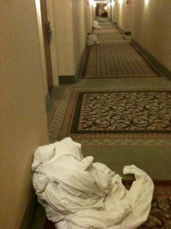 Windsor Hotel Atlanta Airport South: hallway full of dirty laundry