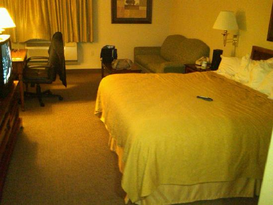 Quality Inn Plainfield: room 209