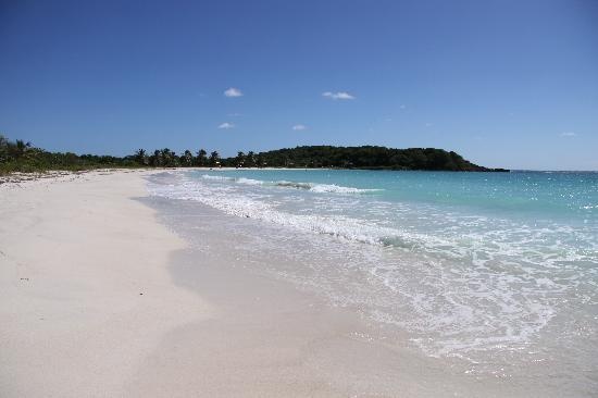360 Vieques: Day at the beach