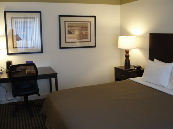 BEST WESTERN PLUS River North Hotel: Newly renovated guestrooms