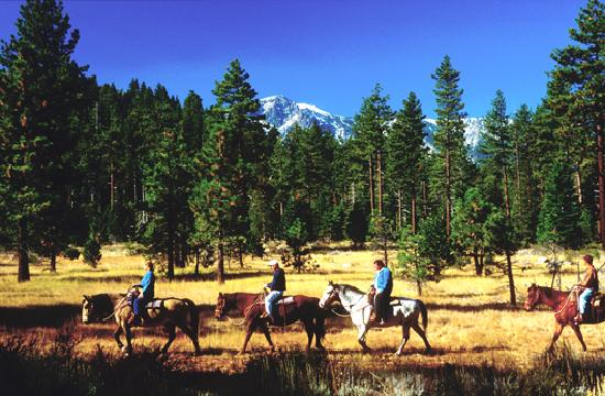 Lake Tahoe Area: Horseback Riding